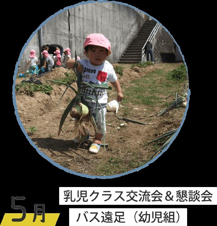 5月 乳児クラス交流会&懇談会 バス遠足(幼児組)